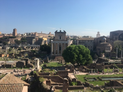 Standing at the top of Palatine Hill, looking over the Roman Forum